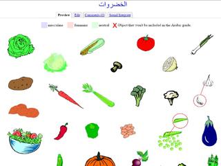 Vegetables (Vocabulary)