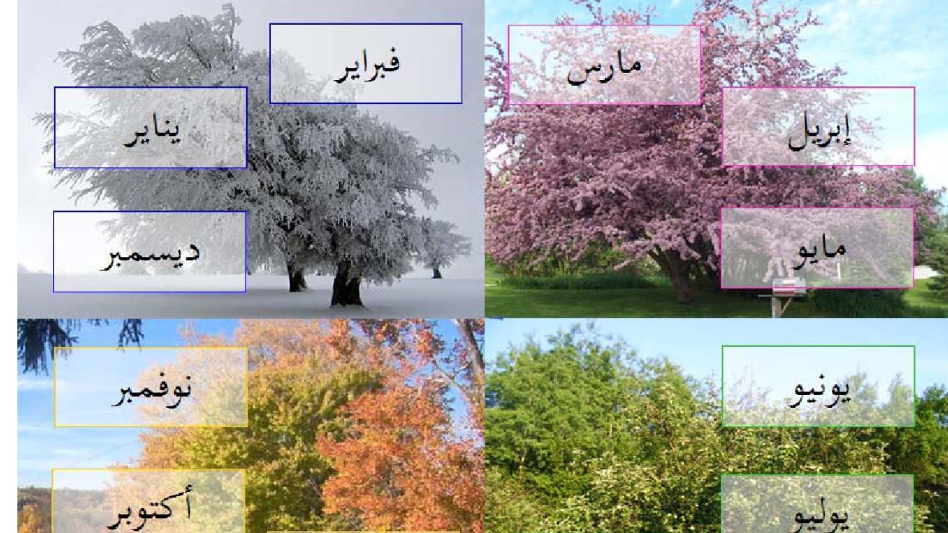Arabic Months