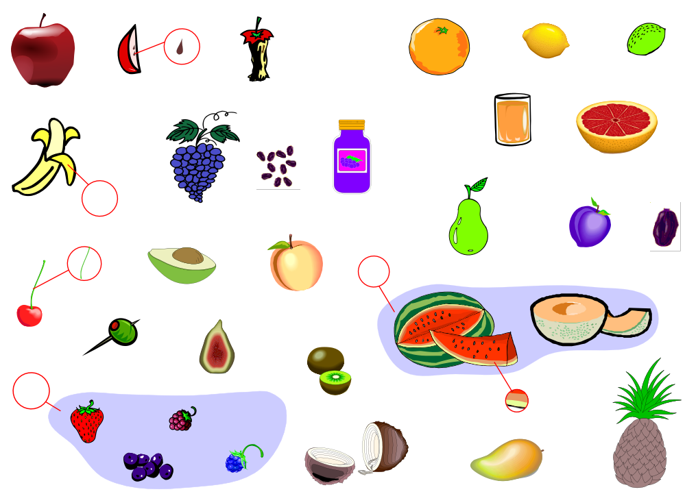 Fruits (Vocabulary)