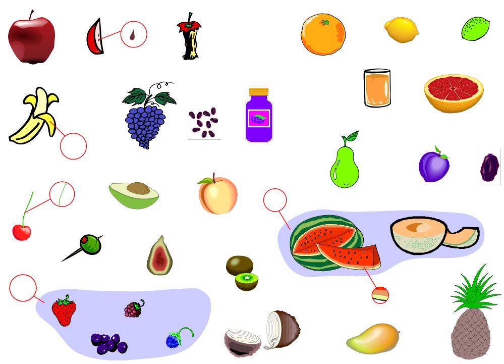 Fruits (Vocabulary)