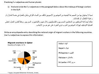 Using نسبة Adjectives in Context
